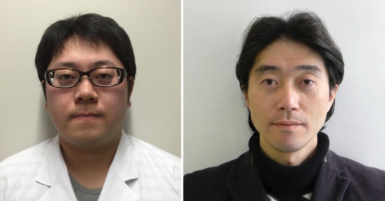 Taisho Yamada (left), first author, and Akinori Takaoka (right), communicating author of the paper (Photo: Taisho Yamada, Akinori Takaoka